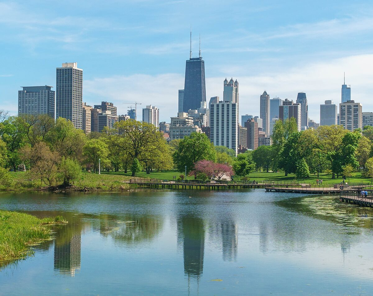 chicago skyline photographed from south pond in lincoln park